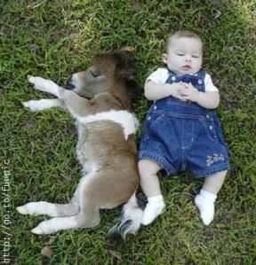 donkey_and_baby