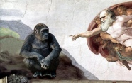 God-Ape